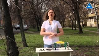 Ручные сеялки купить для огорода и теплиц(Ручные сеялки для огорода - как выбрать, как купить. Мы предлагаем как щеточные сеялки так и ручные сеялки..., 2014-04-04T06:22:37.000Z)