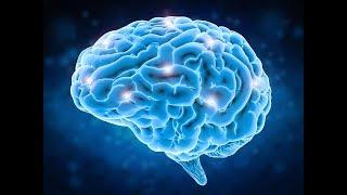 Разкриване на невероятните възможности на мозъка и хипнозата