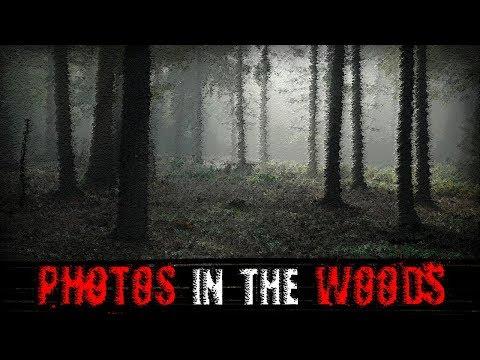 """Photos in the Woods"" | Creepypasta"