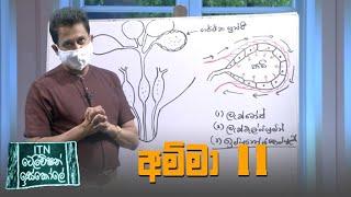 ITN Television Iskole - (2021-09-19) | ITN Thumbnail