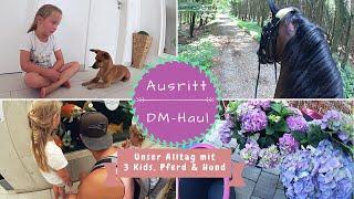 Ausritt |Familien-Ausflug |Schmetterlingshaus |DM-Haul |VLOG |Kathi´s Daily Life