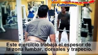 ejercicios para fortalecer la espalda baja