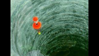 Зимняя рыбалка на поплавок. Непогода.