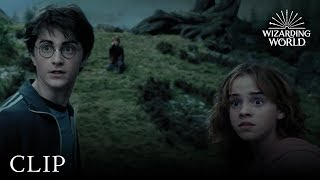 The Whomping Willow | Harry Potter and the Prisoner of Azkaban