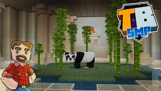 Best Panda Habitat Ever!- Truly Bedrock SMP Season 2! - Episode 31