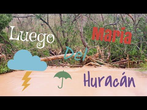 Luego del Huracán Maria| Area oeste, Aguada, destrucción en todo Puerto Rico