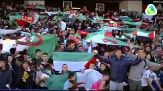 الجزائر vs فلسطين