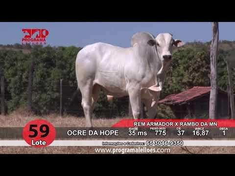LOTE 59   HOPE 135