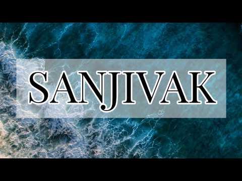 Sanjivak- organic nutrient