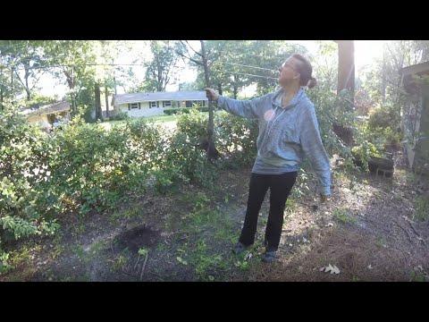 garden-update-may-11,-2020