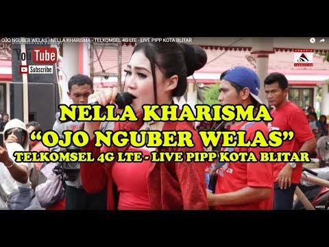 OJO NGUBER WELAS - NELLA KHARISMA - TELKOMSEL 4G LTE - LIVE PIPP KOTA BLITAR