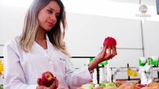 Momento Saúde: Alimentos Termogênicos - 09/04/2018