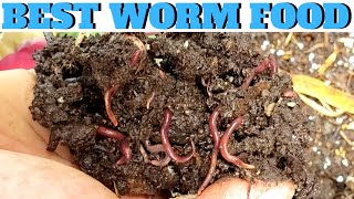What to Feed Worms: Vermicompost Made EASY
