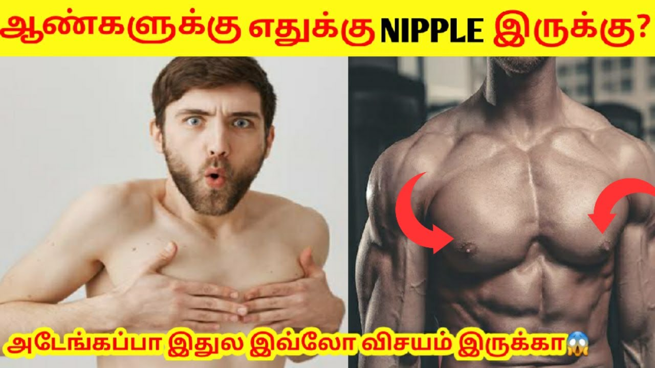 Download Why Men have NIPPLE like Women? | Tamil Facts | Most Amazing Facts | Miss Facts