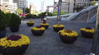 韓国鉄道旅行12 韓国の観光列車に乗ってきました!