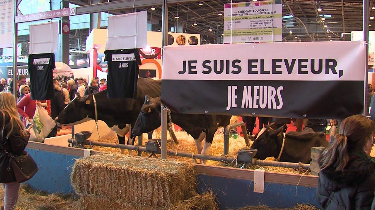 Salon de l'agriculture : quel bilan pour le monde agricole ?