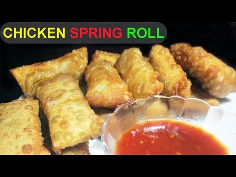 CHICKEN & VEGGIE SPRING ROLL