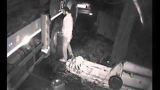 Mazot Hırsızı Kameraya yakalanıyor