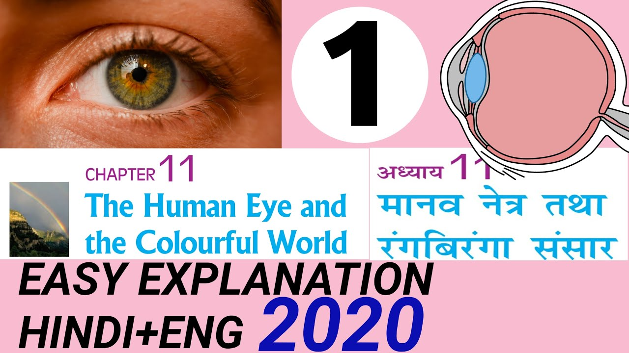  CLASS 10TH SCIENCE   THE HUMAN EYE and COLOURFUL WORLD ...