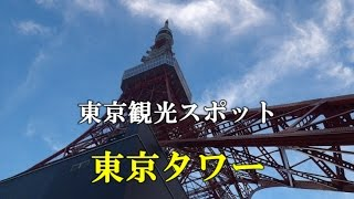 (2014年8月) 東京都港区芝公園4丁目2-8にある集約電波塔である。