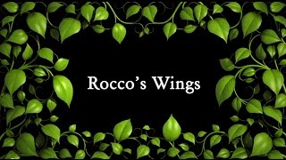 Rocco's Wings (Tales of Terrakesh, Book 1)