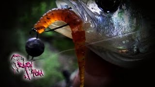 Про Рыбалку. Ловля Окуня на Микроджиг. Nano Minnow & Polaris. Crazy Fish.