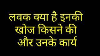 लवक क्या है ।लवक के प्रकार ।लवक के कार्य ।what is plastids in hindi