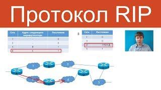 Протокол RIP | Компьютерные сети. Продвинутые темы