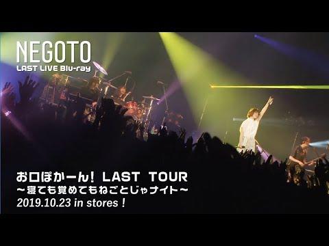お口ぽかーん!LAST TOUR 〜寝ても覚めてもねごとじゃナイト〜 -Teaser 02-
