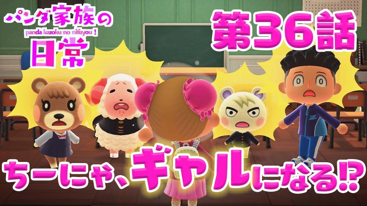 【あつ森アニメ】パンダ家族の日常#36「ちーにゃ、ギャルになる!?」