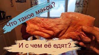Що таке ''макса''? І з чим її їдять в Якутії? Yakutia food