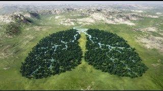 Vibrasphere - Breathing Place [Visualization]