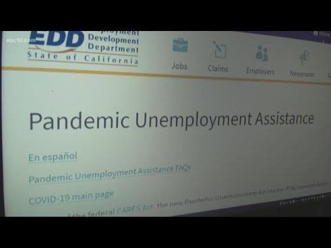 business-owners,-self-employed-can-apply-for-unemployment-benefits-on-april-28