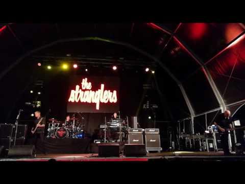 The Stranglers - Golden Brown (live, Santo Tirso)
