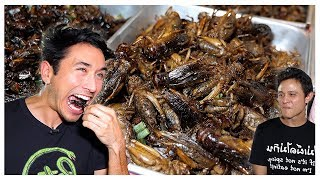 Eating The Best Reviewed BUGS In Bangkok EXOTIC Street Food With Mark Wiens