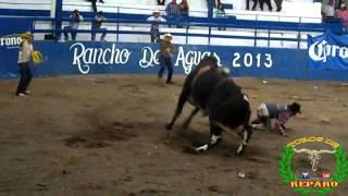 """¡CONOCELO! """"El Payaso"""" de Rancho El Crucero Hrnos. Magaña"""