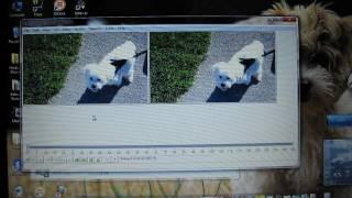 VirtualDub DeShaker Image Stabilizer Tutorial