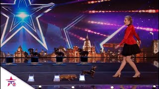 She And Her CUTE Dogs Perform A Hot Doggie Show For The Judges!| Britain's Got Talent 2020