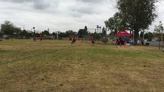 Zine's touchdown