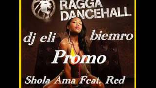 Shola Ama Feat  Red Rat remix