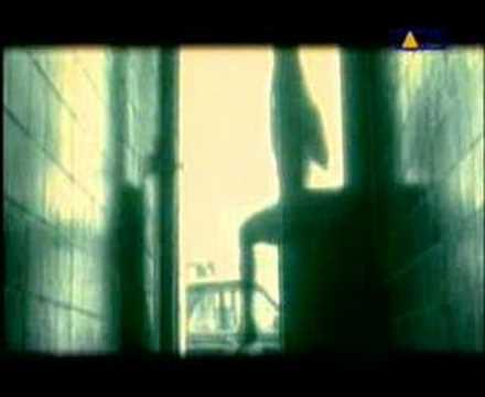 Die Toten Hosen - Alles aus Liebe