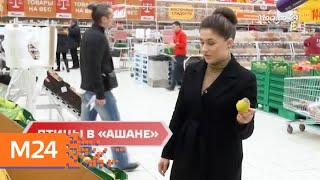 """""""Городской стандарт"""": животные и птицы в продуктовых магазинах - Москва 24"""