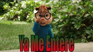 Video Ardillas - Ya Me Enteré (REIK) | Letra + Descarga download MP3, 3GP, MP4, WEBM, AVI, FLV November 2017