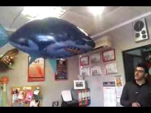 squalo volante radiocomandato youtube