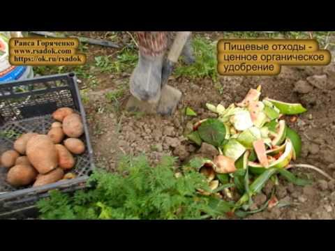 Услуги по вывозу и утилизации мусора от ООО «ПК ПРОМЭКО