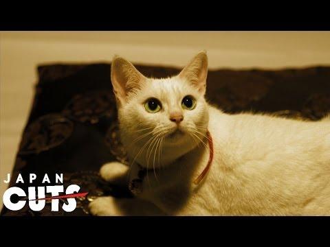 """Neko Samurai ~Samurai ♥ Cat~"" trailer (English subtitles) JAPAN CUTS 2014"