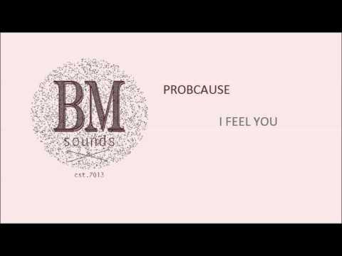 ProbCause - I Feel U [Hip-Hop]