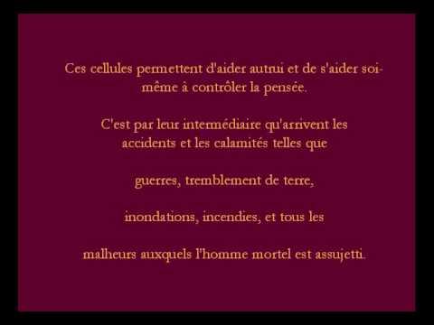 Top Parole de Sagesse._001.avi - YouTube DW26