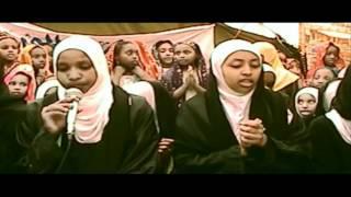 Matwaladziyu Tasti Ayam - Harari Zikri