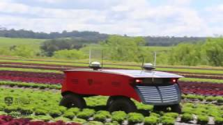 RIPPA Demonstrating Autonomous Crop Interaction thumbnail